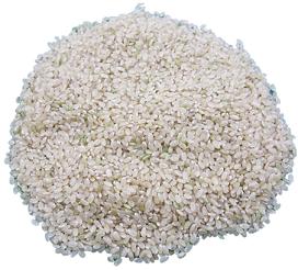 玄米.png